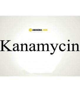 کانامایسین Kanamycin