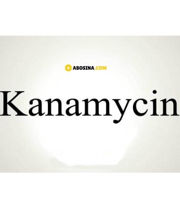 خرید کانامایسین | قیمت Kanamycin | فروشگاه مواد شیمیایی