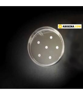 دیسک تشخیصی ونکومایسین